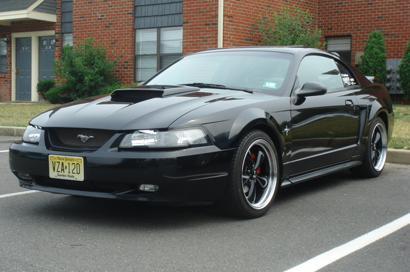 st4ngbanger 2000 ford mustang specs photos modification info at cardomain. Black Bedroom Furniture Sets. Home Design Ideas