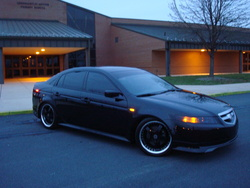 shadhmyers 2004 Acura TL