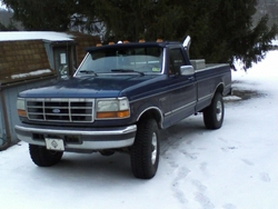 3055099 1994 Ford F150 Regular Cab