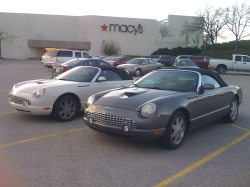 KickAzz03Stangs 2003 Ford Thunderbird