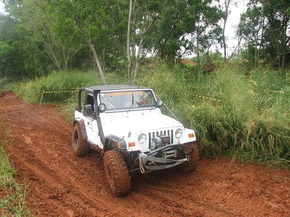 Another 4wdoct 1981 Jeep CJ7 post... - 11344985