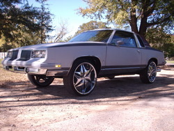 louphi86cutdogs 1986 Oldsmobile Cutlass Supreme