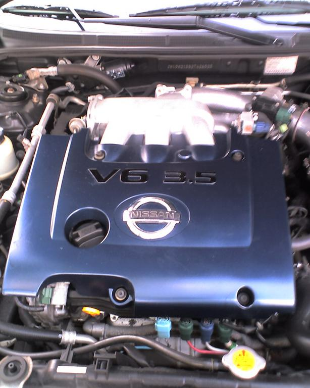 Another BlueMaxSE 2002 Nissan Maxima post... - 11572641