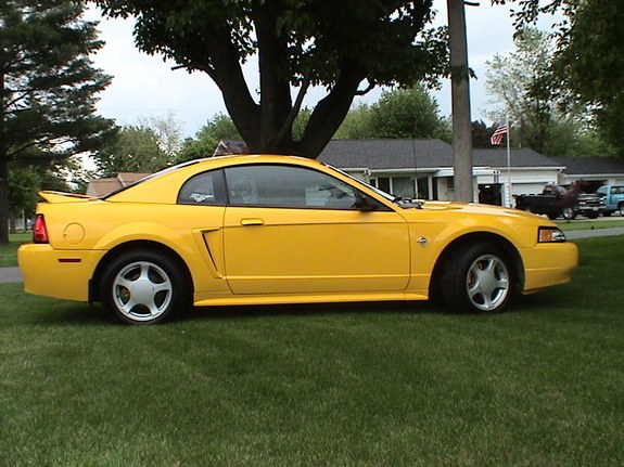 nicknock 39 s 1999 ford mustang in delphos oh. Black Bedroom Furniture Sets. Home Design Ideas