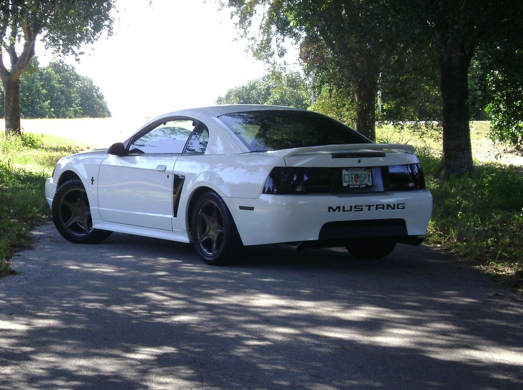 AheadOfTheCurve's 2000 Ford Mustang