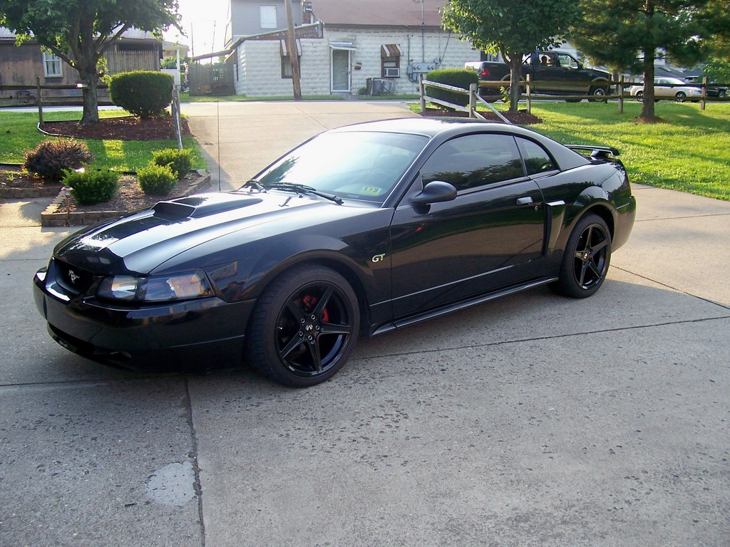 stove500 2001 Ford Mustang Specs, Photos, Modification ...