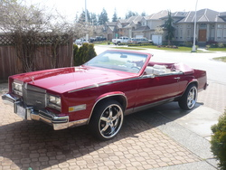 Da_Caddy_Daddys 1984 Cadillac Eldorado