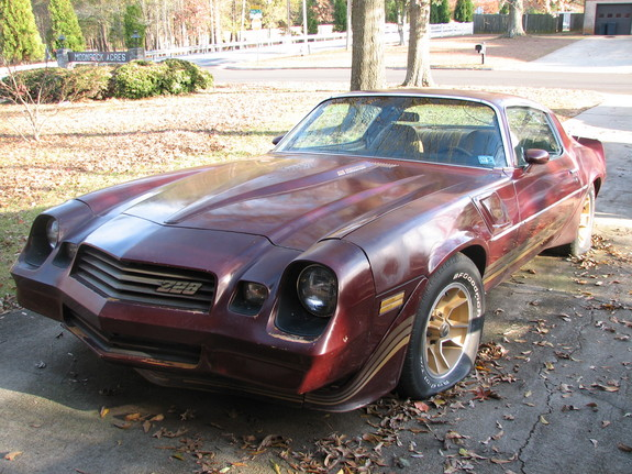 Another 84SSccc 1981 Chevrolet Camaro post... - 11480233