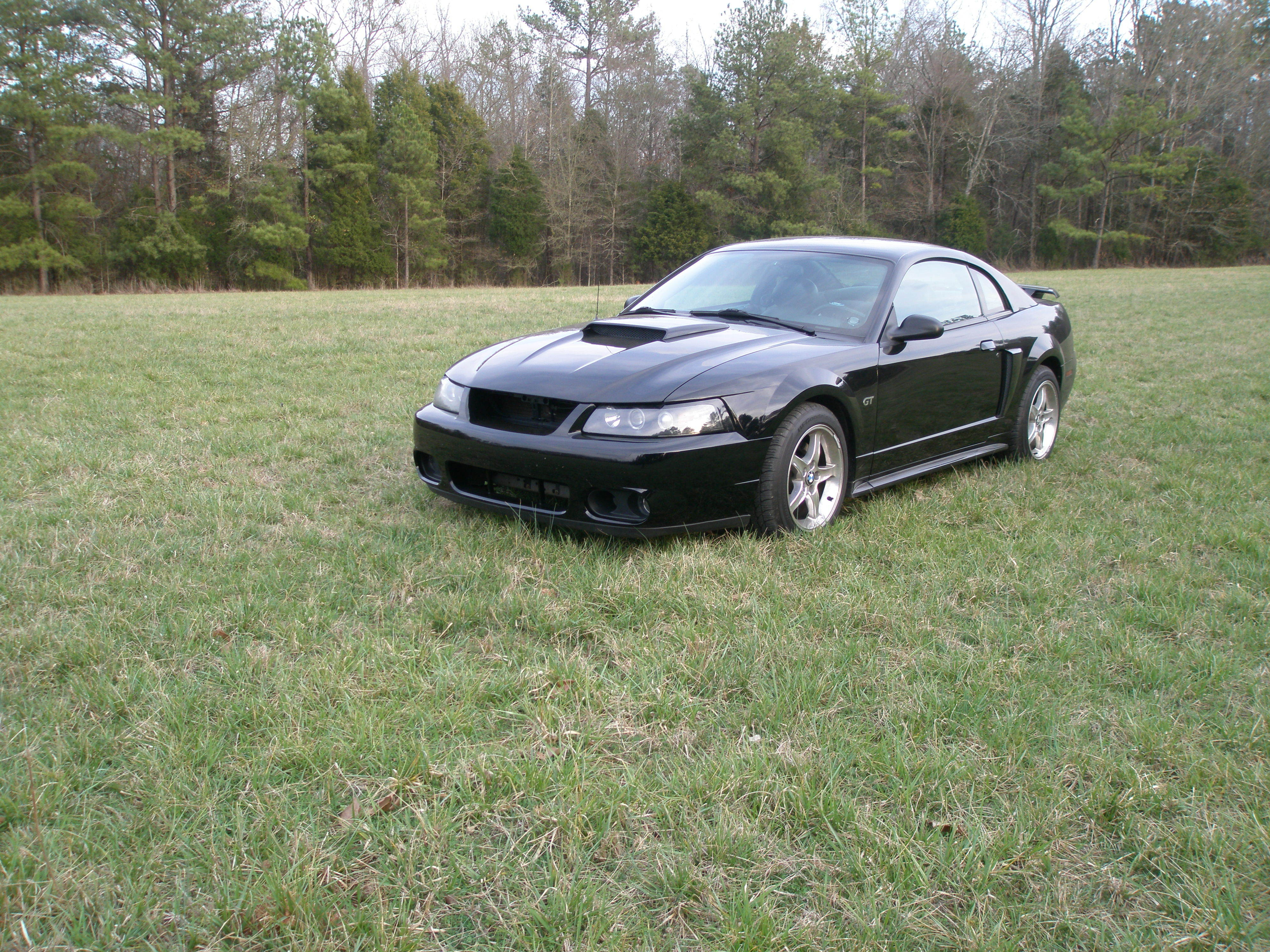 mustangman281 39 s 2003 ford mustang in greenwood sc. Black Bedroom Furniture Sets. Home Design Ideas