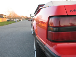 tannervs 1983 Ford Mustang