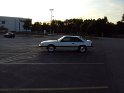 Mustanqs 1991 Ford Mustang