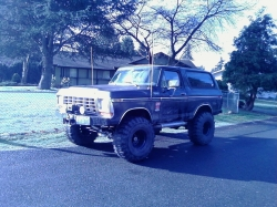3096042 1979 Ford Bronco
