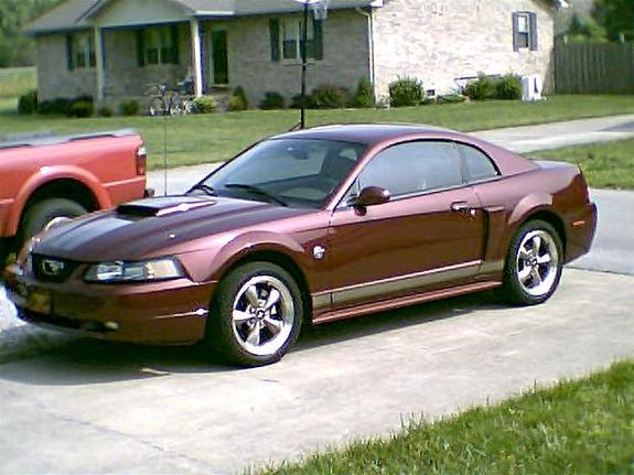 search results ford mustang gt 2004 0 60 autos weblog. Black Bedroom Furniture Sets. Home Design Ideas
