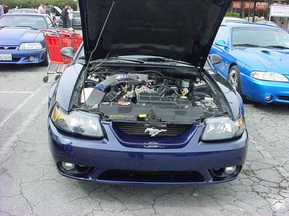 Another 96AlpineTBird 2002 Ford Mustang post... - 11519107