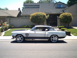 68fordbusinesss 1968 Ford Mustang