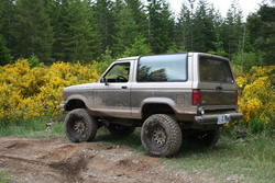 Stumpy3s 1990 Ford Bronco II