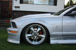 TroyL 2007 Ford Mustang