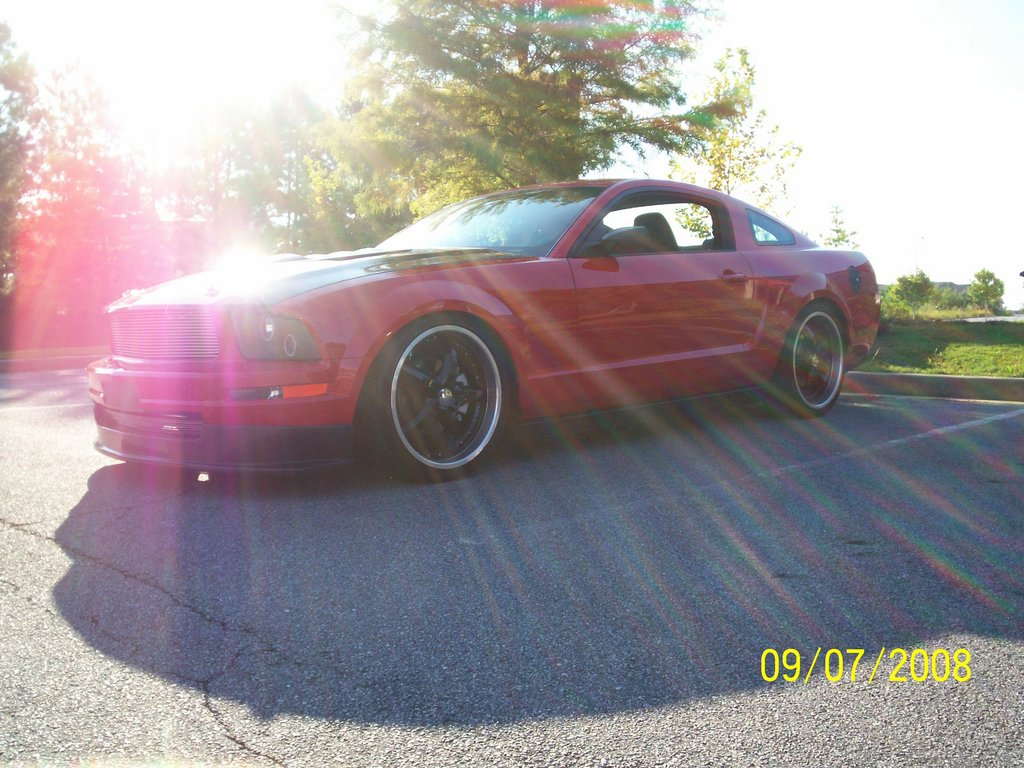 Another gtz28 2006 Ford Mustang post... - 11667657