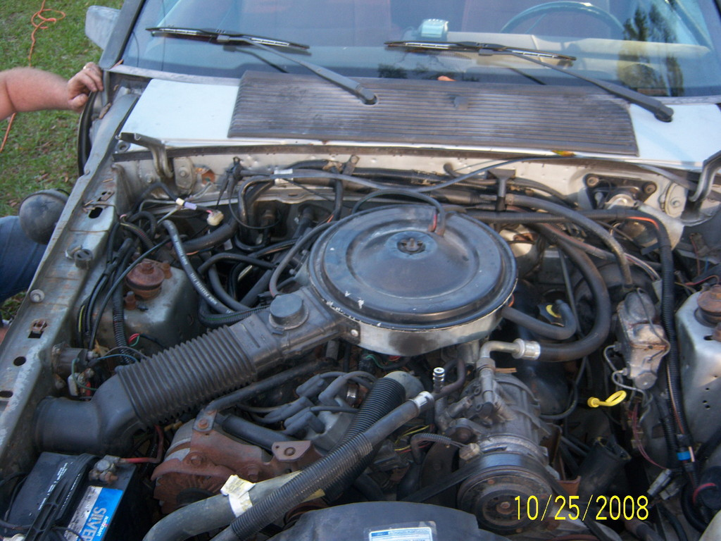 Another 86mustangbrandon 1986 Ford Mustang post... - 11674486