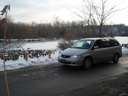 03babyonboards 2003 Honda Odyssey