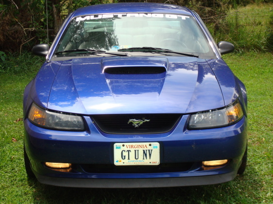 penolapimp 39 s 2003 ford mustang in ruther glen va. Black Bedroom Furniture Sets. Home Design Ideas