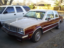81Phoenixs 1981 Pontiac Phoenix
