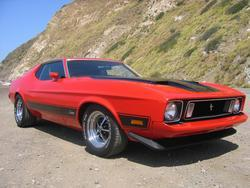 5TBIRD9 1973 Ford Mustang
