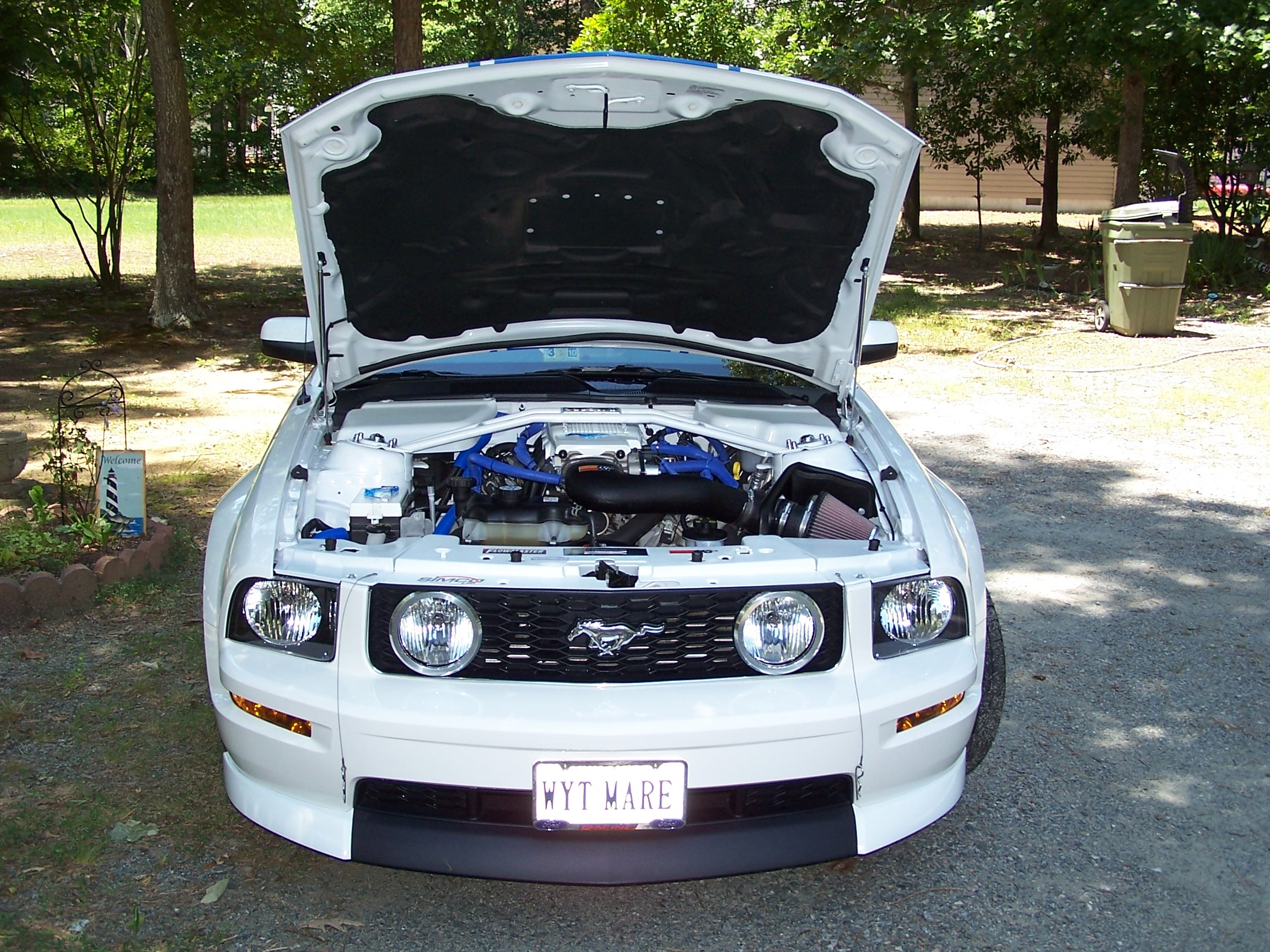miamiknsfan 2008 Ford Mustang 11737380