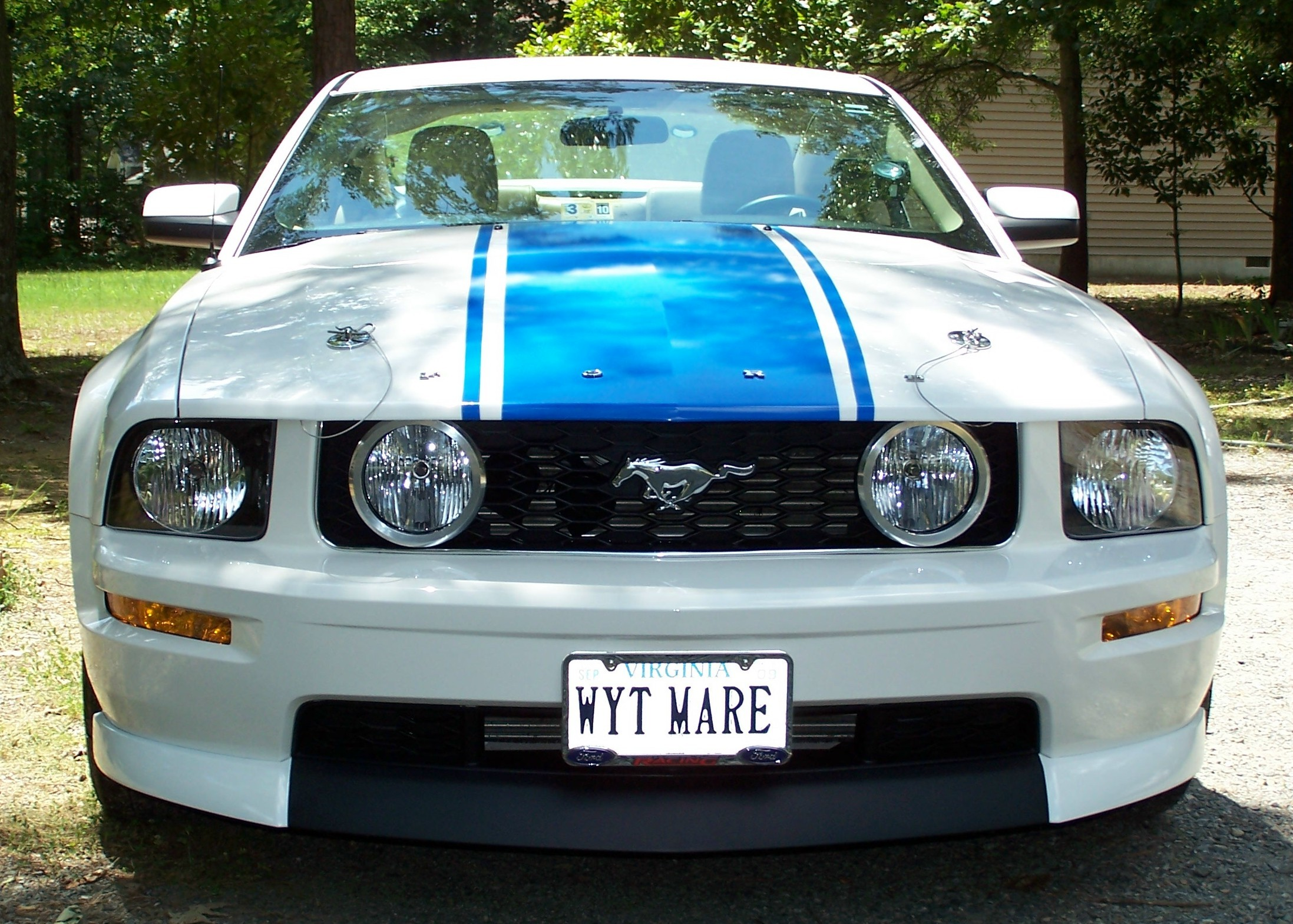 miamiknsfan 2008 Ford Mustang 11737381