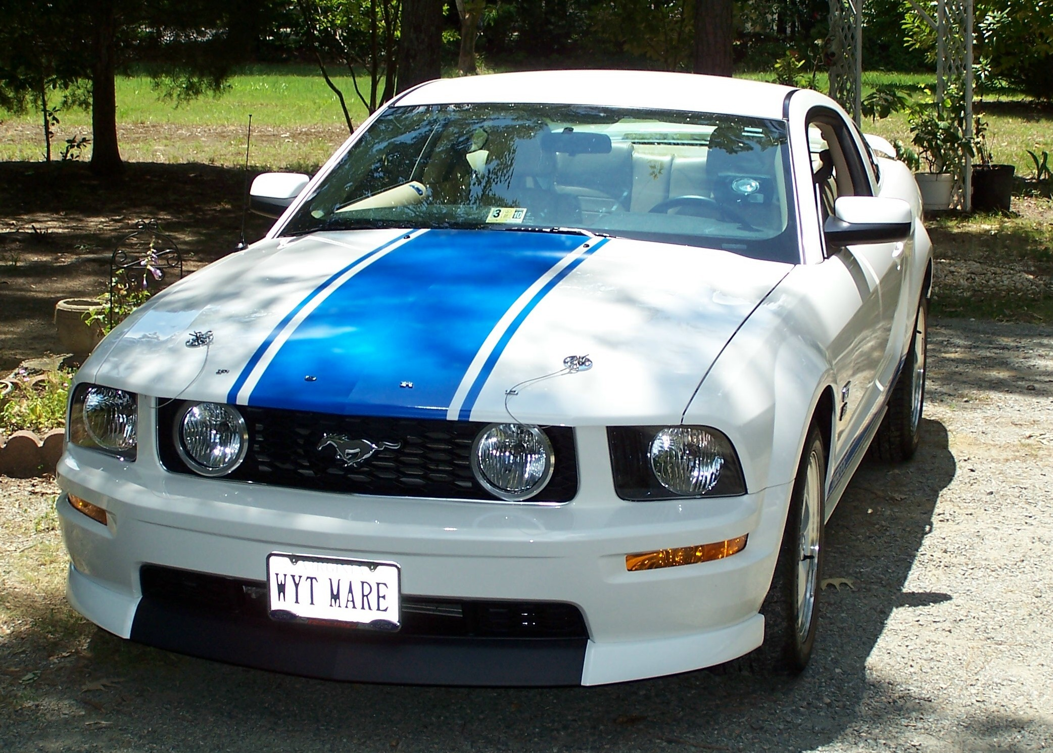 miamiknsfan 2008 Ford Mustang 11737382