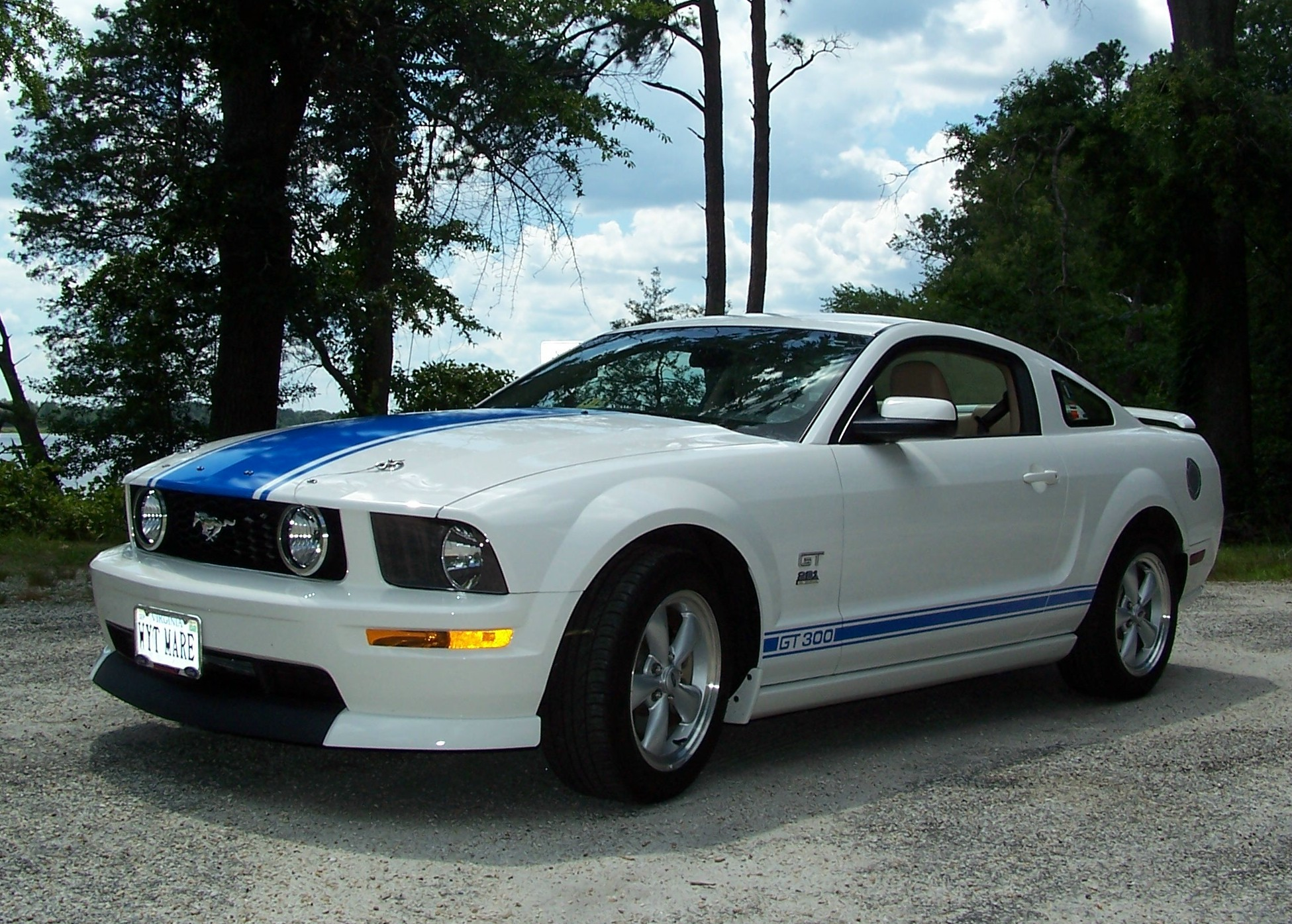 miamiknsfan's 2008 Ford Mustang