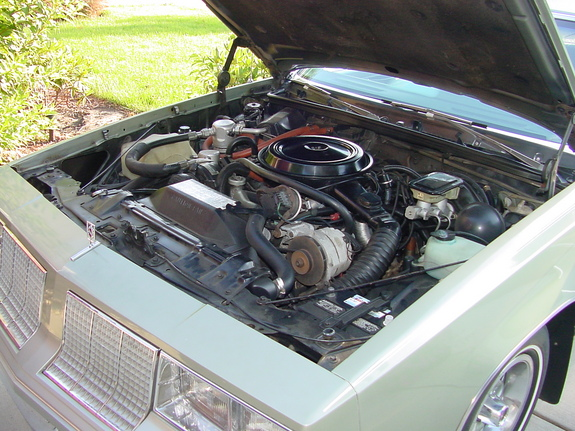 Another wetbizket 1985 Oldsmobile Cutlass Supreme post... - 11745371