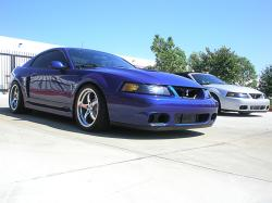 BlackshadowGTs 2003 Ford Mustang