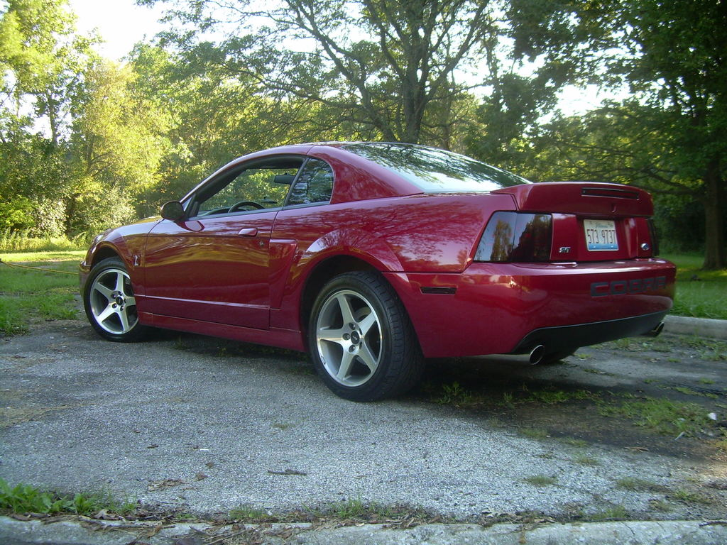 Another mike12884 2003 Ford Mustang post... - 11800449