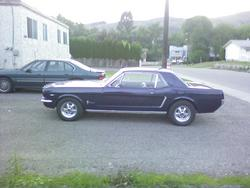 pusspounder 1964 Ford Mustang