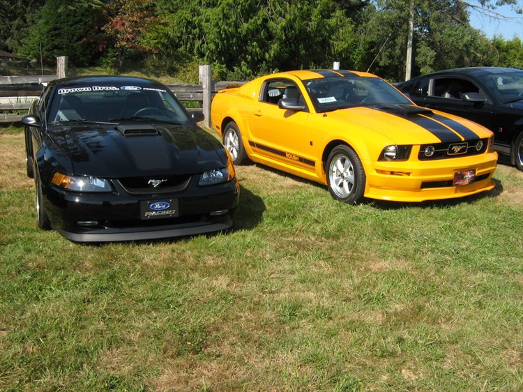 Another venom800tt 2007 Ford Mustang post... - 11812811