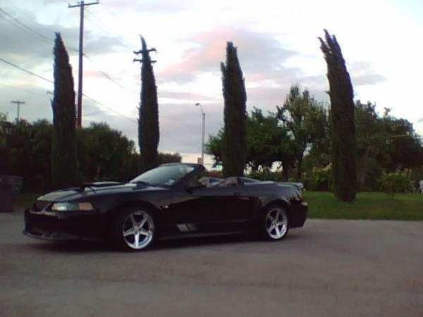 GotSqueeze 2000 Ford Mustang 11829327