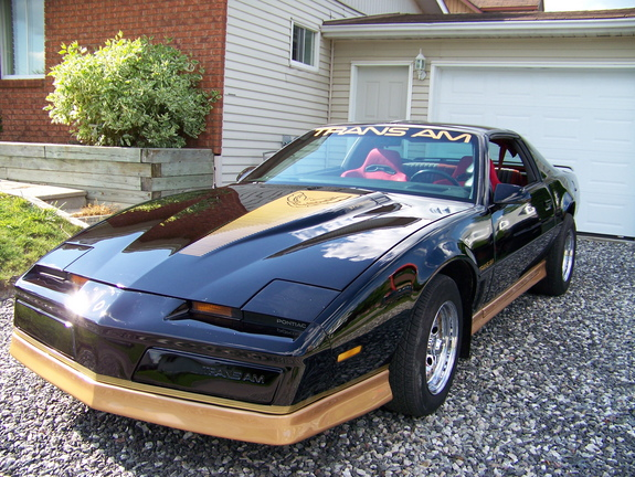 superjas 1984 Pontiac Trans Am 11835997