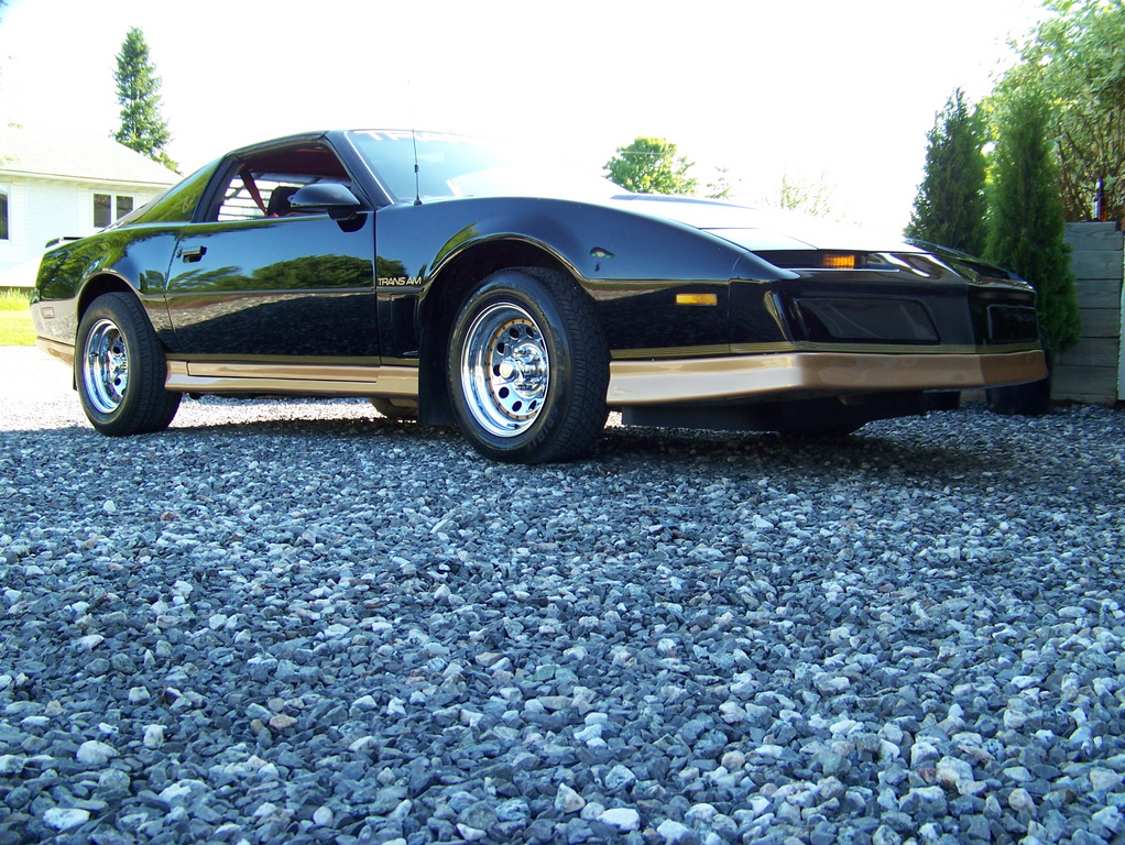 superjas's 1984 Pontiac Trans Am