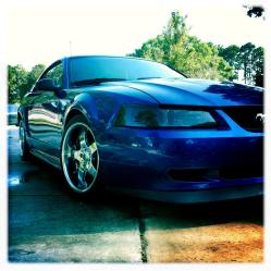 LiLMissLaylas 2004 Ford Mustang