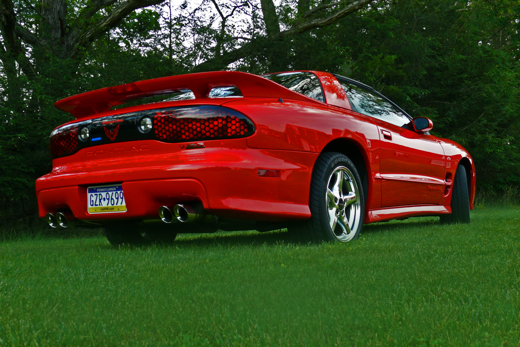 danesmess 2000 pontiac trans am specs photos modification info at cardomain. Black Bedroom Furniture Sets. Home Design Ideas