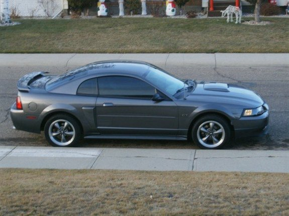 Big T Money 2003 Ford Mustang Specs Photos Modification