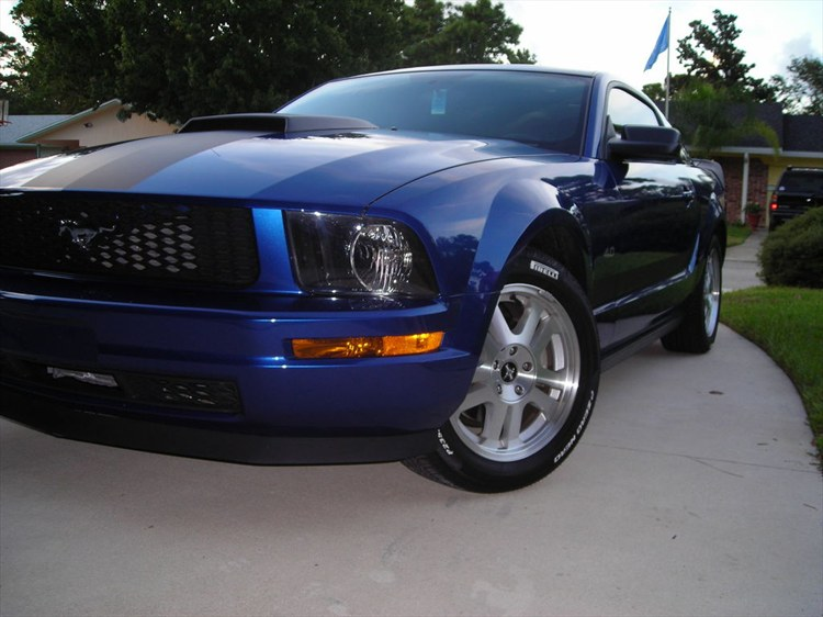 Another mikf44 2007 Ford Mustang post... - 11871754
