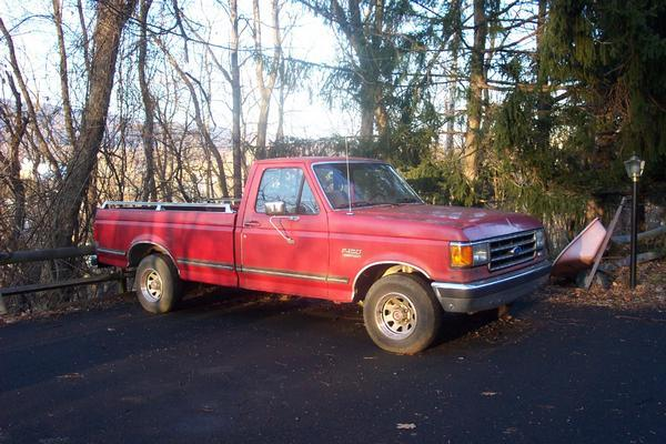 mizat110 1989 Ford F150 Regular Cab 11888780