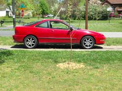 turcas16s 1994 Acura Integra