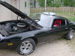 got_james48s 1979 Pontiac Firebird