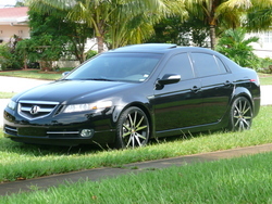 dsalmons 2008 Acura TL