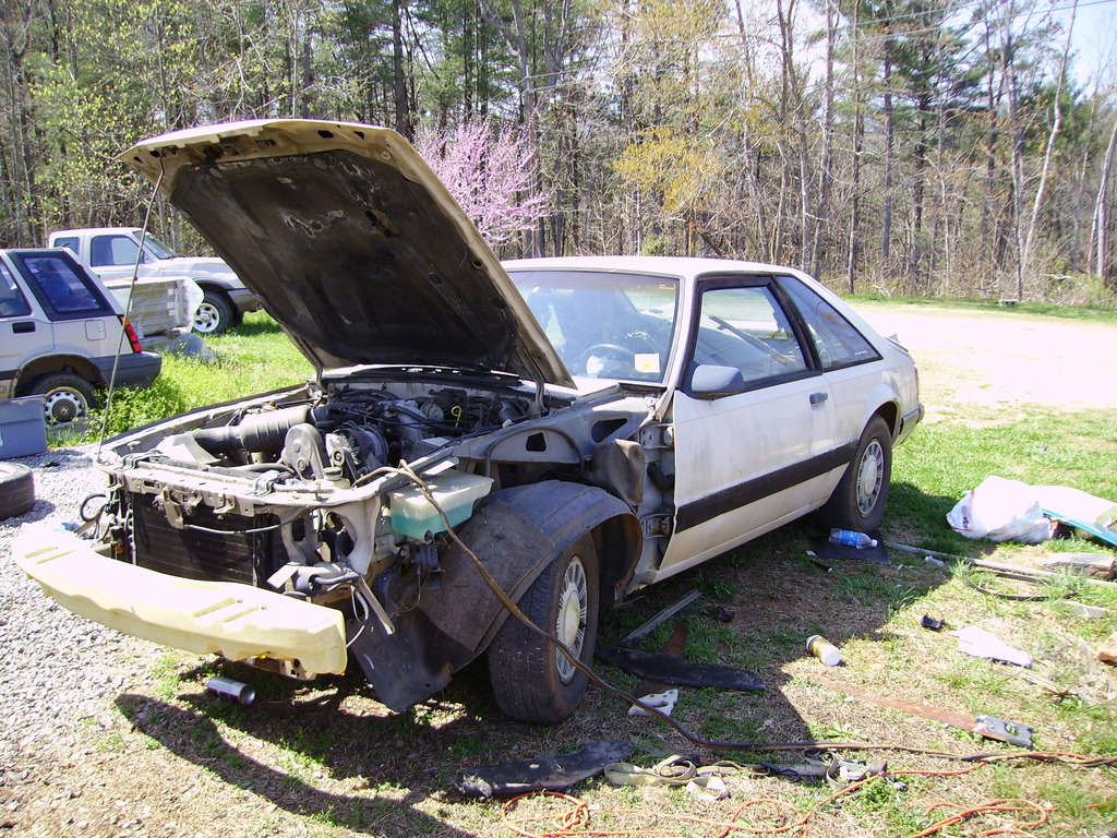 Another Powerstroke3704 1988 Ford Mustang post... - 11921532