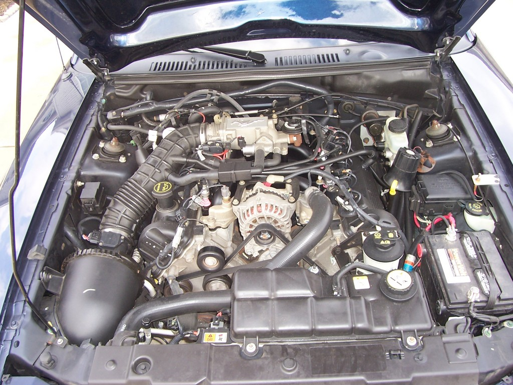 Another babyhue 2003 Ford Mustang post... - 11943466