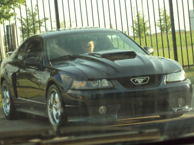 babyhue 2003 Ford Mustang